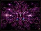 Dragon Butterfly