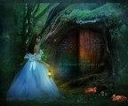 Finding Wonderland