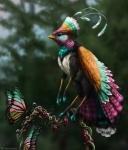 Pentecost Rainbow Finchgryph