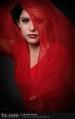 Red Chiffon