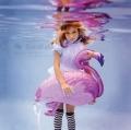 Alice's Flamingo