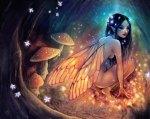 The Fairydust Nest
