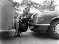 Ancilla Tilia - Between Cars