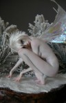 Winter Wonderland Tinkerbell