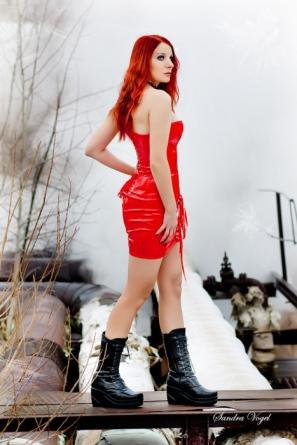 Winter Veil By Sandra Vogel