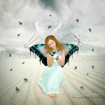 An Angel's Butterflies
