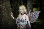 Moth Fairy Queen