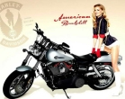 Motorcycle Pin-Up V