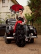 Gothic Bride (15)