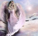 Pink Angels (1)