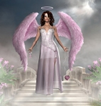 Pink Angels (9)