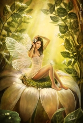 The Flower Fairy