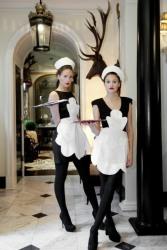 Maid Service (10)