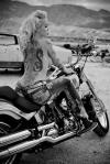 Biker Beauty (30)